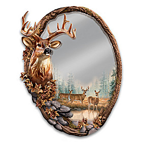 Reflections Of The Forest Mirror